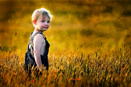Child of the Fields