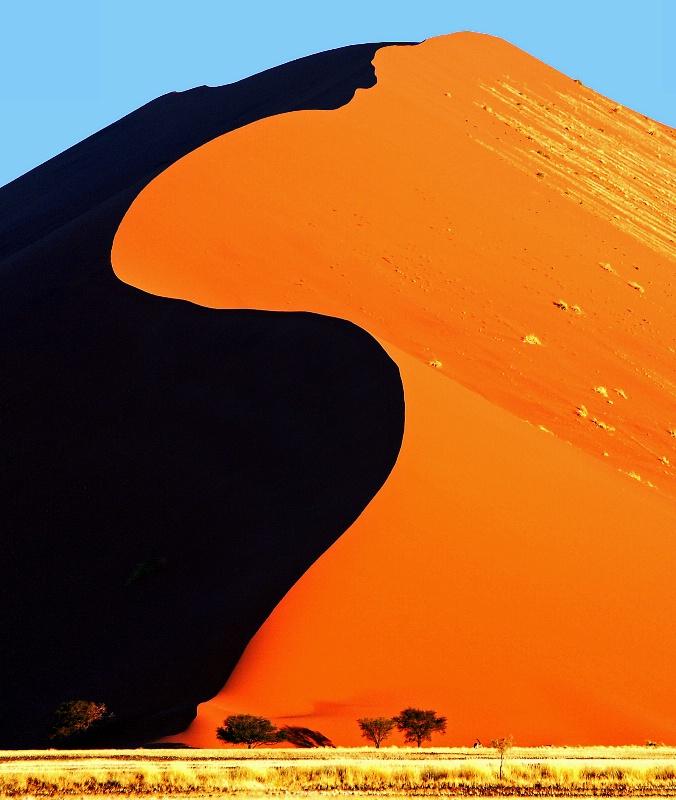 S-Dune