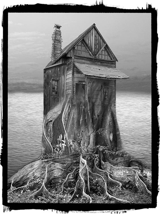 Tree House - ID: 8418523 © Jeff Lovinger