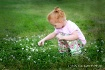 Weeds Of Beauty -...