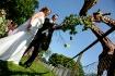 Wedding at Zoo