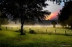 Sunrise and Fog