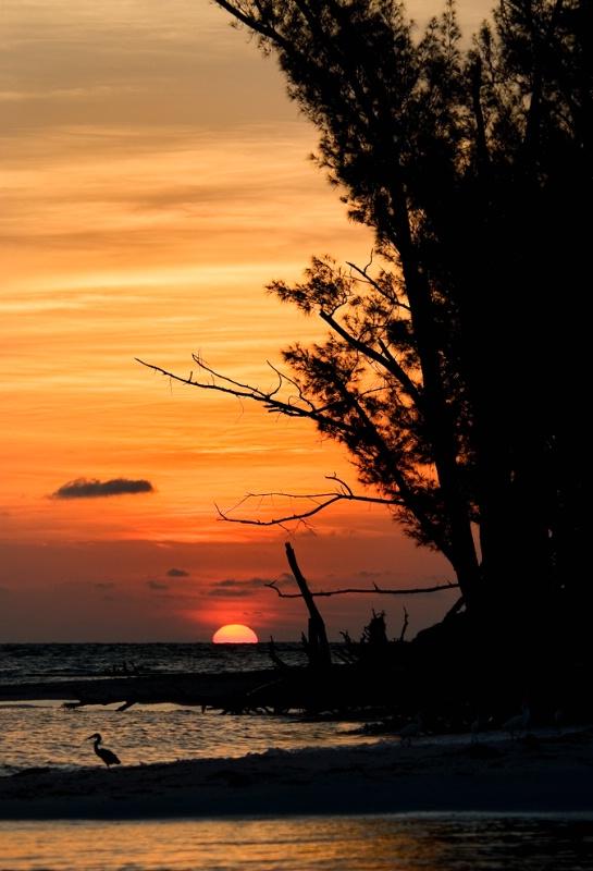 Sunset at Redfish Pass - ID: 8541891 © Michael Cenci