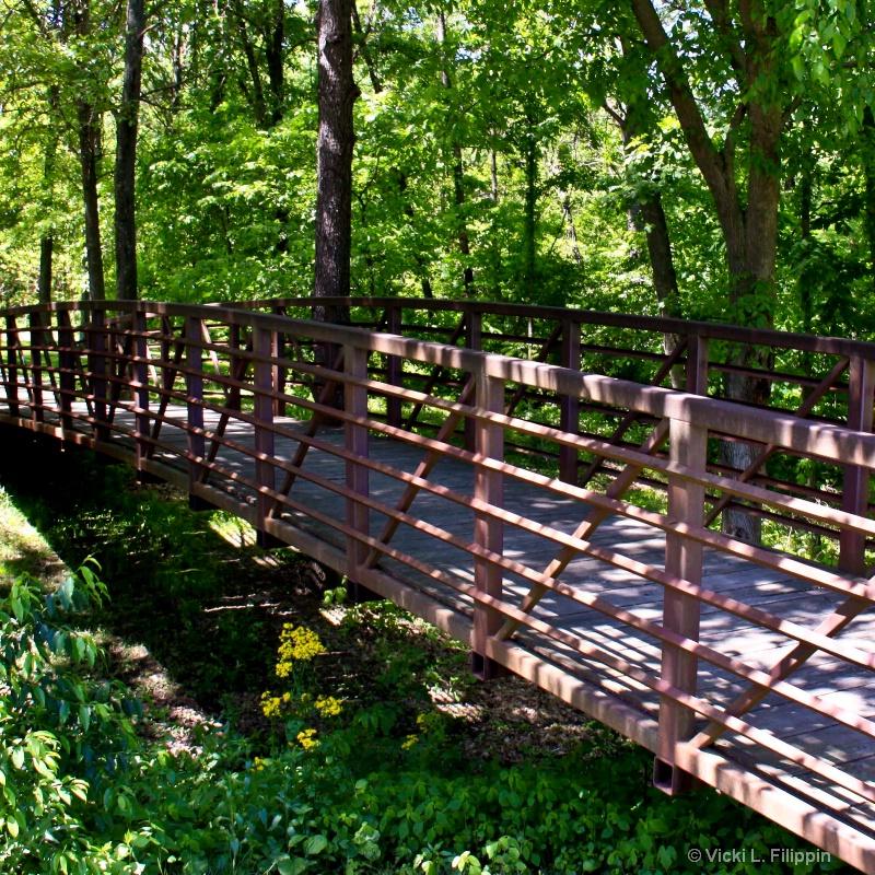 Bridge in Dappled Sun