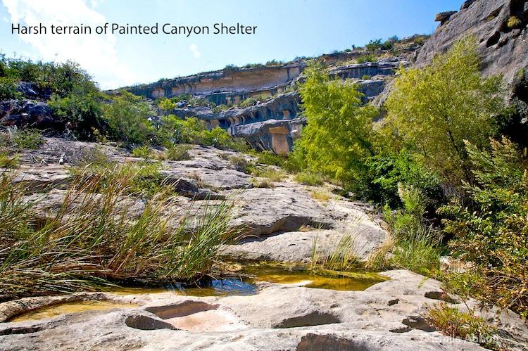 Harsh terrain of Painted Shelter - ID: 8582913 © Emile Abbott