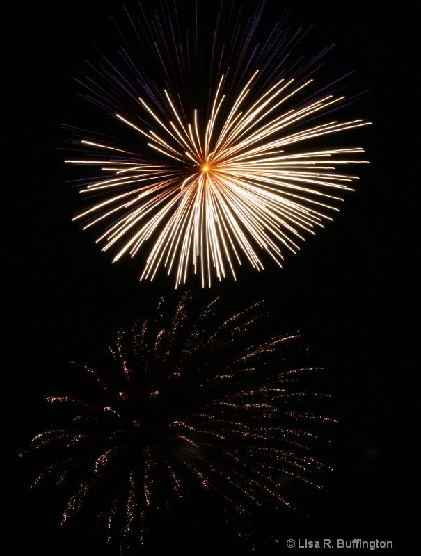 Fireworks in the Park - ID: 8598493 © Lisa R. Buffington