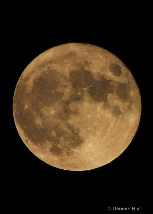 Full Moon at Midnight