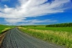Road to the sky, ...