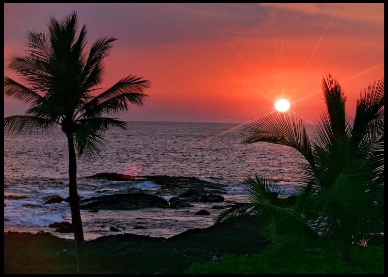 ~ Tropical Sunset ~ - ID: 8775214 © Trudy L. Smuin
