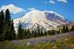 Mount Rainier fro...