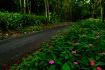 Garden Route to E...