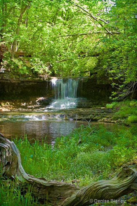 falls1 - ID: 8862874 © Denise Bierley