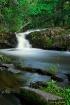 'Along Falls ...