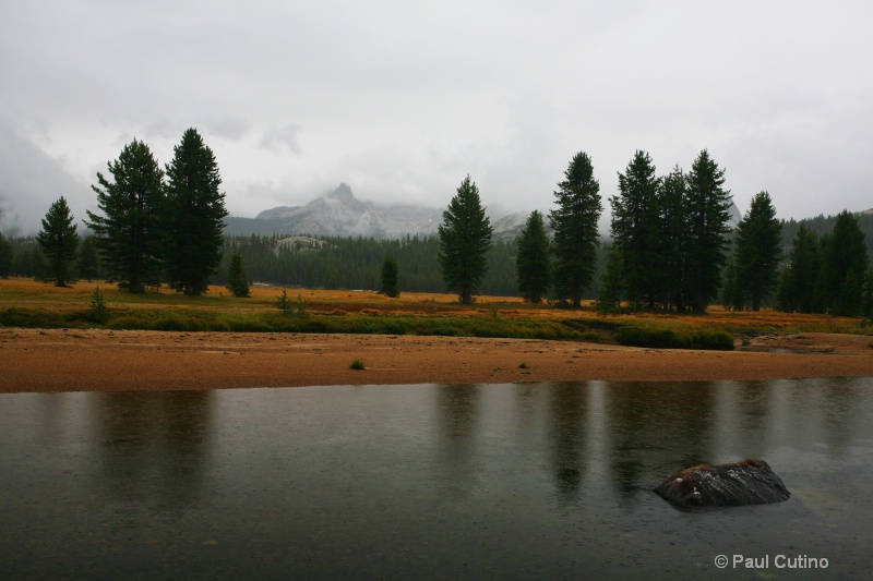 Tuolumne Meadows with Cathedral Peak in the backgr - ID: 8999015 © Paul Cutino
