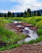 watery path