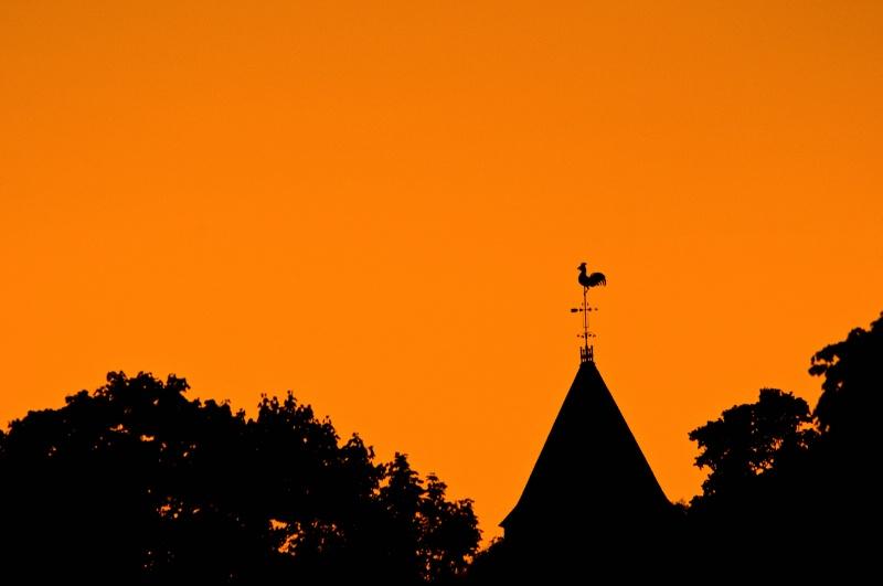 Harvard Sunset - ID: 9127589 © Don Johnson