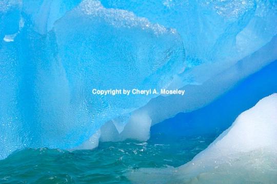 - ID: 9165345 © Cheryl  A. Moseley