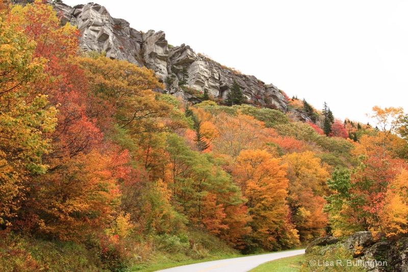 Blue Ridge Parkway - ID: 9180169 © Lisa R. Buffington