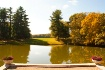 Pond in Fall