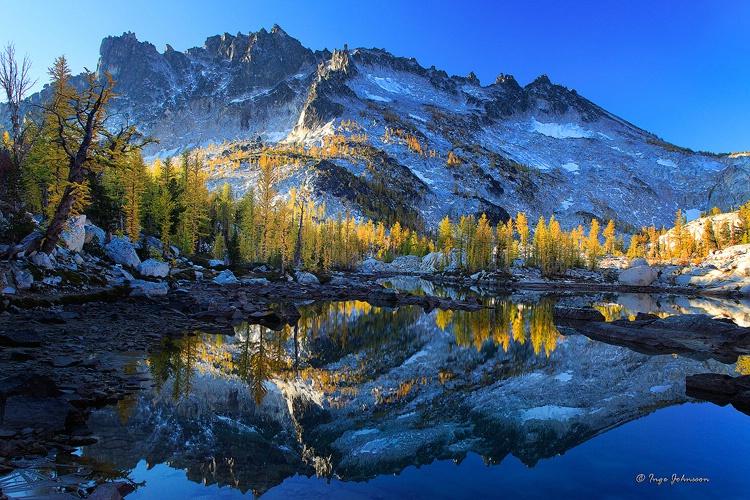 Leprechaun Larches #2 (Enchantment Lakes)