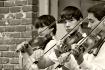 Three Fiddlers