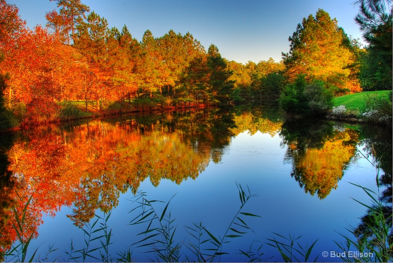 Fall Afternoon Reflections