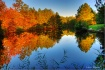 Fall Afternoon Re...