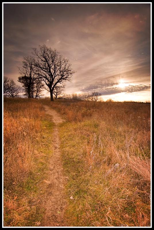 morning prairie trail