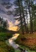 Lake & Pines