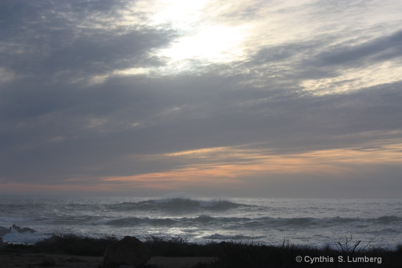 Quiet Joy. . . - ID: 9419261 © Cynthia S. Lumberg
