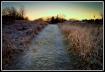 Prairie trail on ...