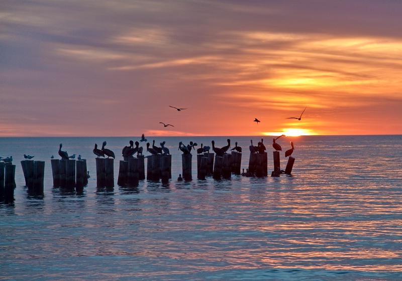 The Perfect Ending - ID: 9441901 © Steve Abbett