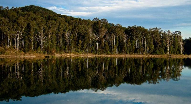 Dam Reflection #1