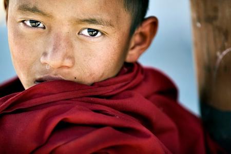 Monk's Eyes