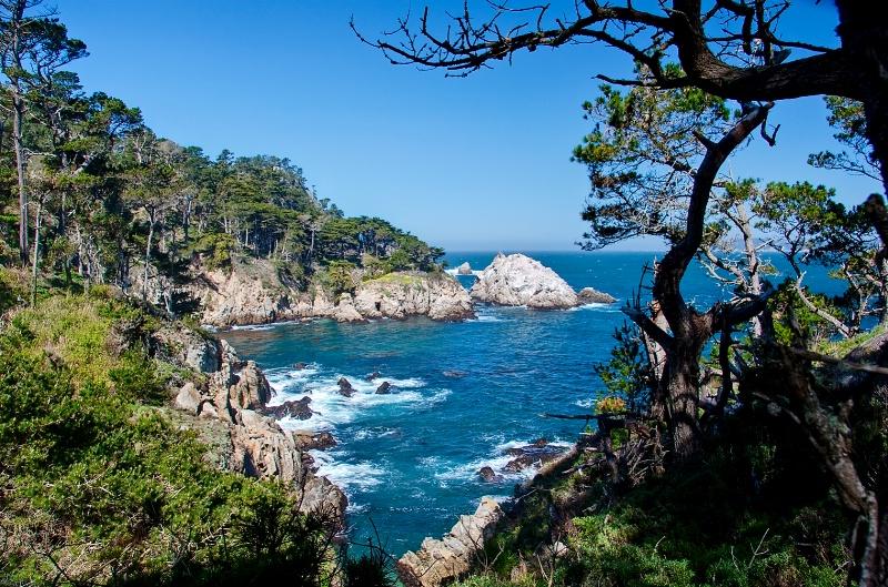 Point Lobos State Park - ID: 9560058 © Steve Abbett