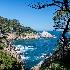 2Point Lobos State Park - ID: 9560058 © Steve Abbett