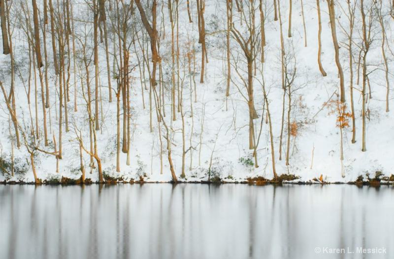 Snowy Hillside - ID: 9599286 © Karen L. Messick