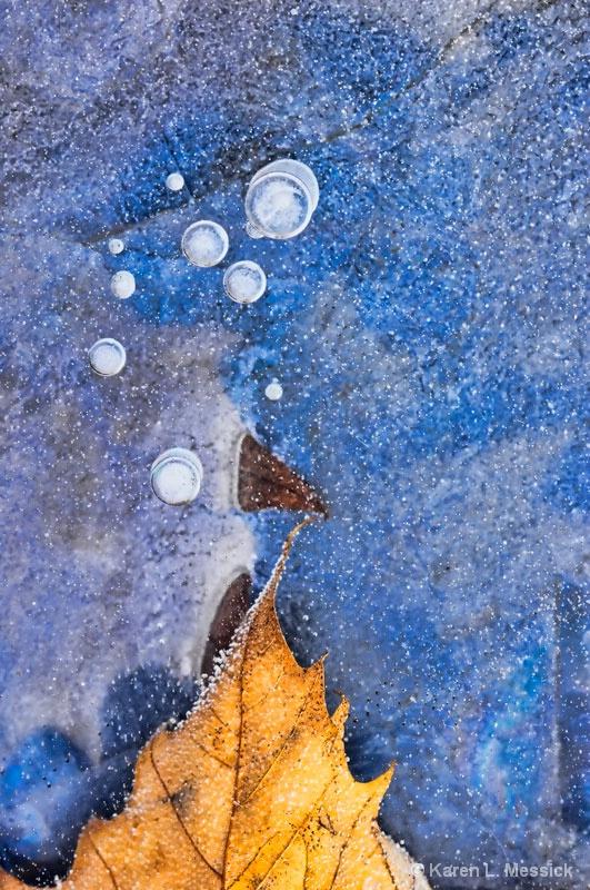 Leaf Touch - ID: 9599506 © Karen L. Messick