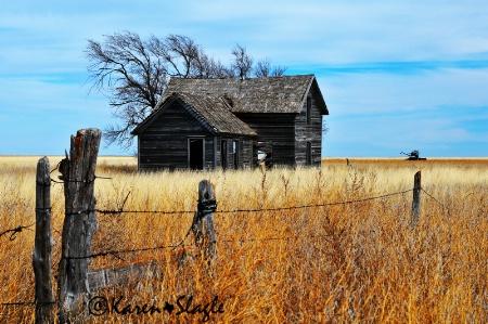 Lonesome Prairie