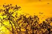 Sunset at Brazos ...