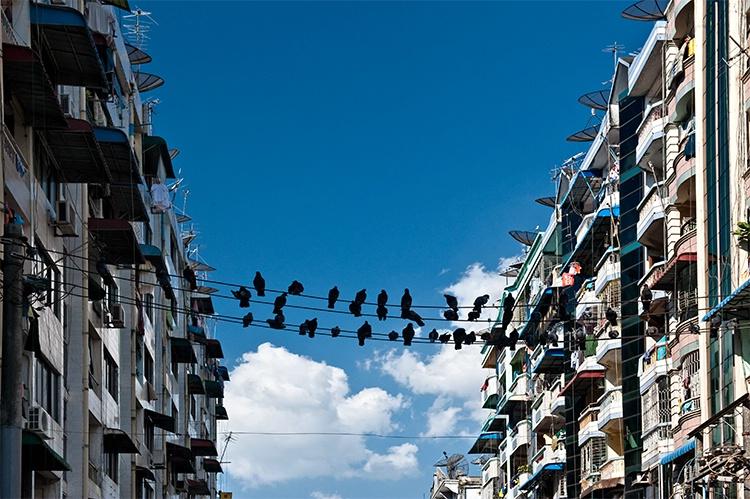 Downtown Rangoon (Yangon), Myanmar (Burma) - ID: 9716536 © Jeff Lovinger