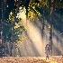 © Jeff Lovinger PhotoID# 9716538: Morning Rays, Myanmar (Burma)