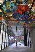 Vibrant Corridor