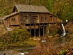 ~Cedar Creek Gris...