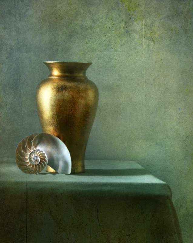 Shell with Gold Vase