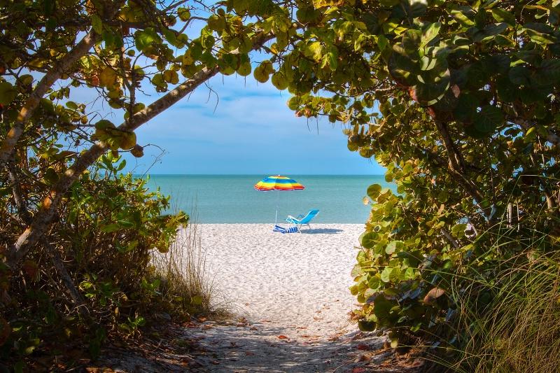 Beach Access - ID: 9744855 © Steve Abbett