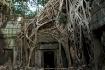 Vietnam/Cambodia ...