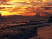 Florida Beach Sun...
