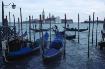 Venice 2.23 02.20...