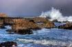 Monterey Wave Cra...